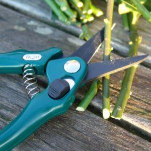 Bloemenschaar 19cm groen