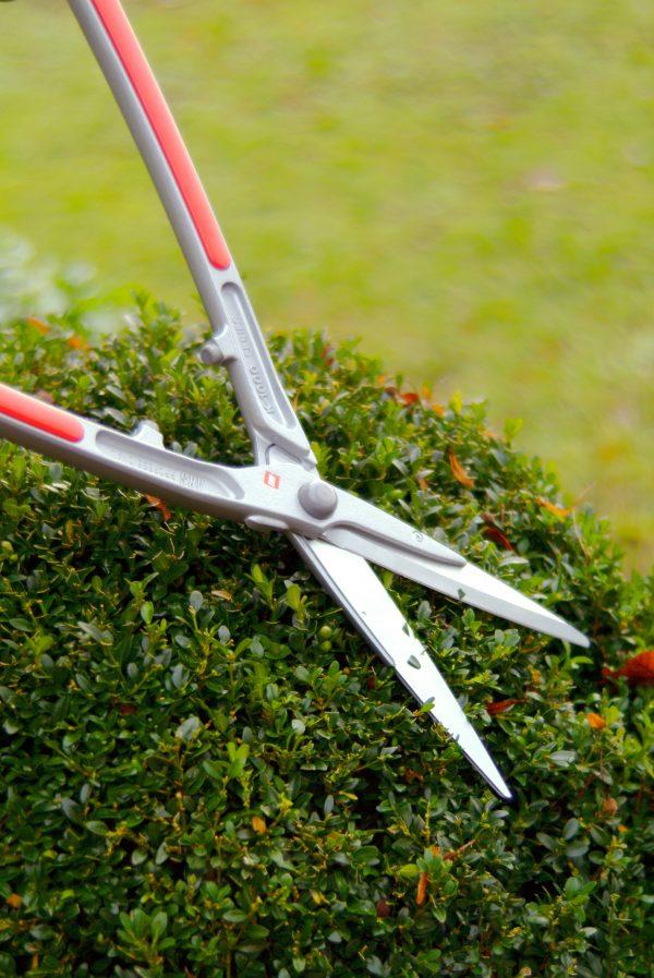 Buxushaagschaar lichtgewicht model