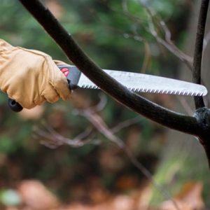 Silky Gomtaro wortelzaag 240 mm